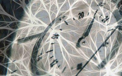 Heure d'été ou heure d'hiver ? Que dit la chronobiologie ?